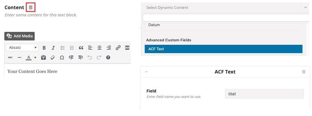 Advanced Custom Fields mit Avada verknüpfen